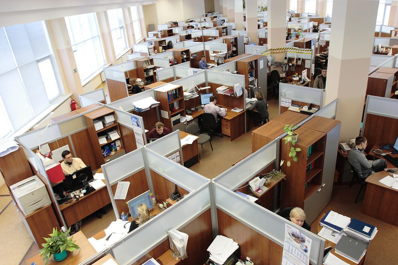 employee-cooperation